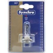 1 ampoule H7 SYNCHRO (blister)