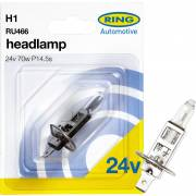 1 ampoule H1 24V RING (blister)