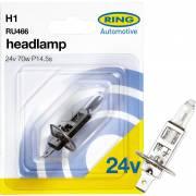 1 ampoule H1 24V RING (blister)